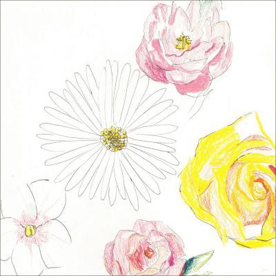 尾崎友直 3rdアルバム『メネ, メネ, テケル, ウ パルシン』LP+CD、6/19に発売が決定いたしました!