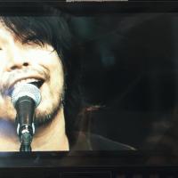 サニーデイ・サービス LIVEセットリストUPしました。7/24<FUJI ROCK FESTIVAL '15>@新潟 苗場スキー場