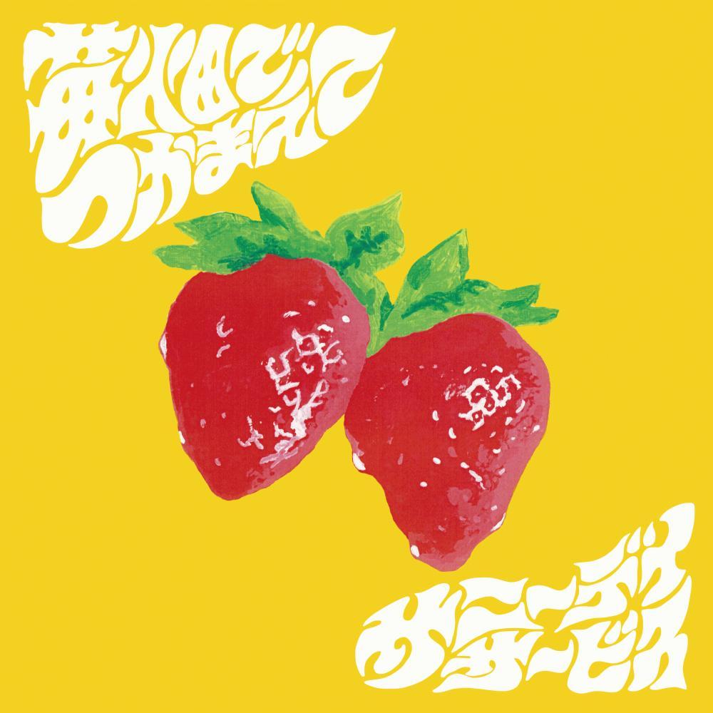 サニーデイ・サービス 1/15 アナログ7インチシングル+CD『苺畑でつかまえて』の発売が決定しました。