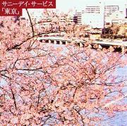 サニーデイ・サービス『東京』20周年を記念して、2008年に太田浩さんに書いていただいた『東京』のレビューの再掲載です。