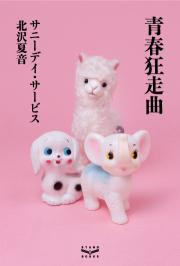 8/30発売、サニーデイ・サービスの初の単行本『青春狂走曲』の刊行が決定しました。